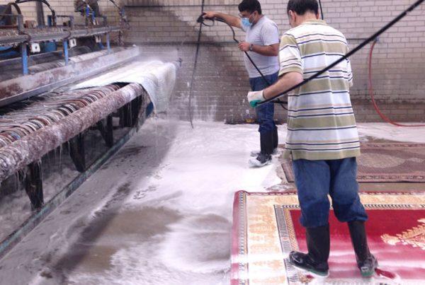 Importance of carpet washing