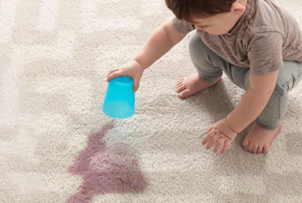 Clear all kinds of stain on the carpet