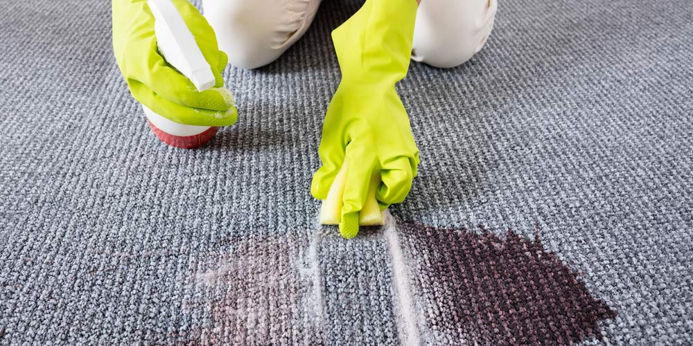Wipe the blood stain on the carpet