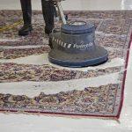 پودر تمیز کننده فرش و موکت