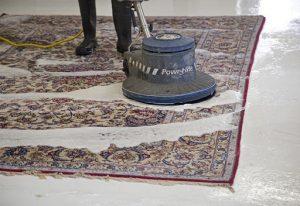 پودر مخصوص شستن فرش - قالیشویی نوین